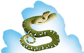 Reptiles - Snakes, Fish, Lizards