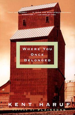 Where you once belonged : a novel