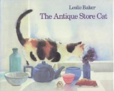 The antique store cat