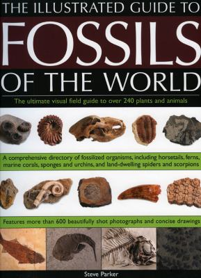 Book Place Hold On The Illustrated Guide To Fossils