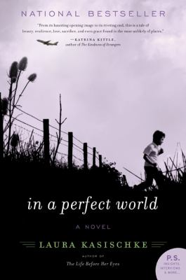 In a perfect world : a novel