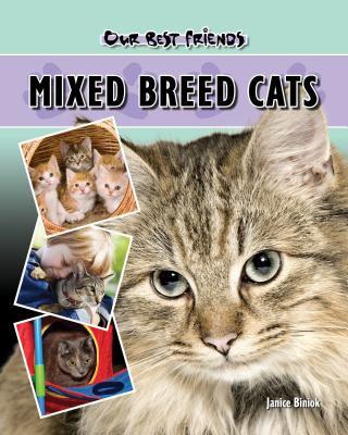 Mixed breed cats