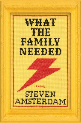 What the family needed : a novel