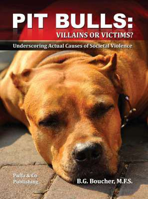 Pit bulls : villains or victims? underscoring actual causes of societal violence