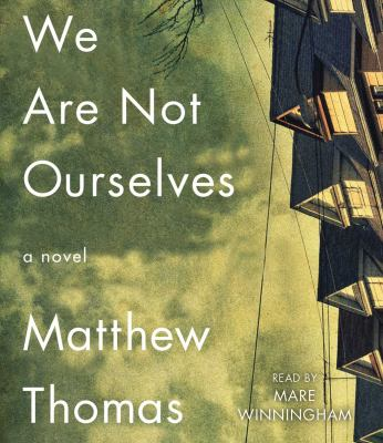 We are not ourselves : a novel