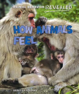 How animals feel
