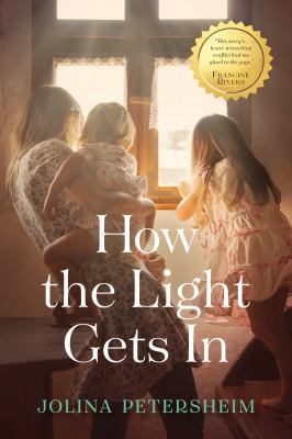 How the light gets in : a novel