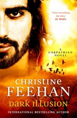 Dark illusion / Christine Feehan.