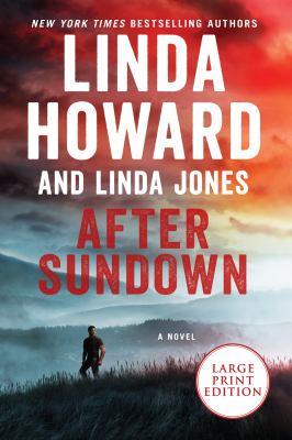 After sundown : a novel