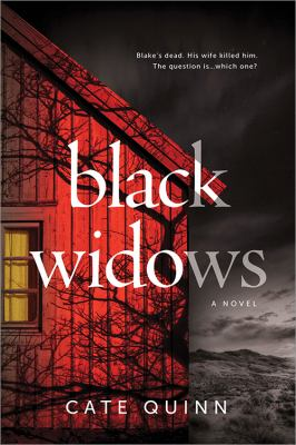 Black widows / A Domestic Thriller