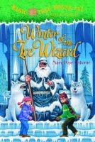 Winter of the ice wizard Book cover