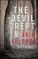The devil crept in : a novel  Cover Image