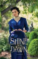 Shine like the dawn Book cover