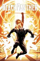Black Panther : a nation under our feet Book two Book cover