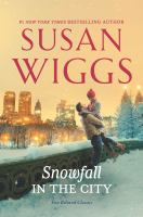 Snowfall in the city Book cover