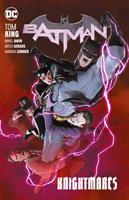 Batman. Vol. 10, Knightmares  Cover Image