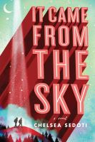 It came from the sky : a novel Book cover