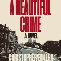 A beautiful crime : a novel Book cover