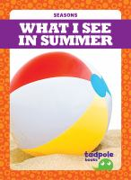 What I see in summer Book cover