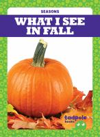 What I see in fall Book cover