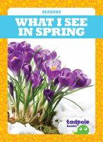 What I see in spring Book cover
