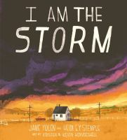 I am the storm Book cover
