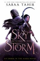 A sky beyond the storm : a novel  Cover Image
