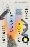 Infinite country : a novel Book cover