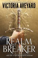 Realm breaker Book cover