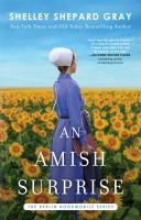 An Amish surprise  Cover Image