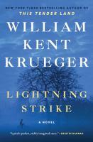 Lightning strike : a novel Book cover