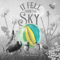 It fell from the sky Book cover